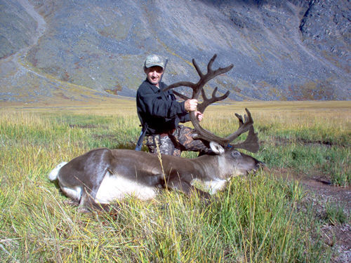 Alan Cory Brooks Range Caribou
