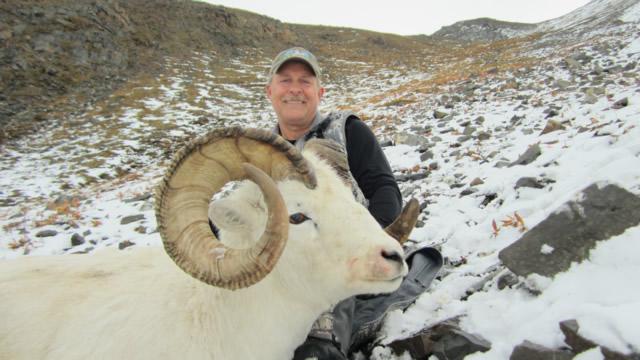 Barry_Barton_Sheep
