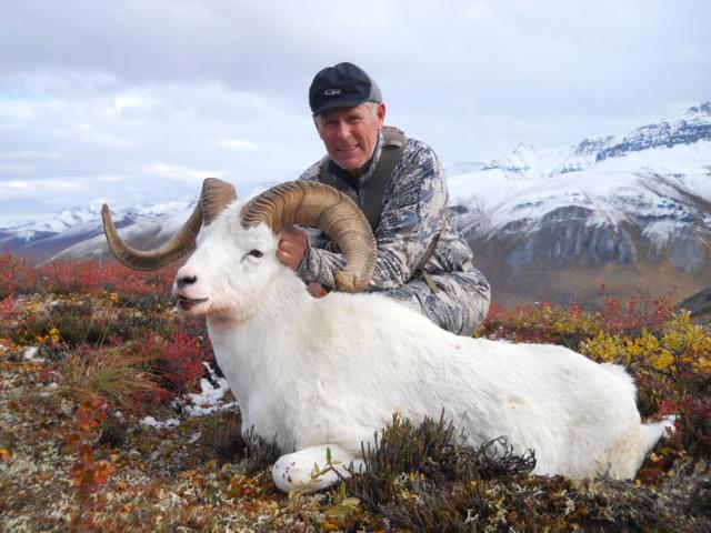 Bill_McMullen_Sheep