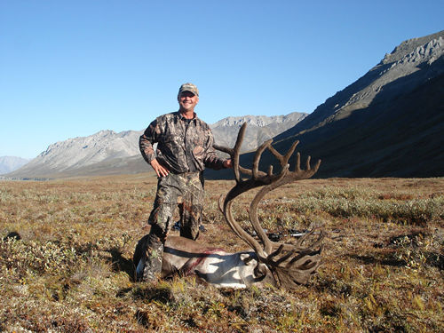 Brady Lee Alaska Brooks Range Barren Ground Caribou