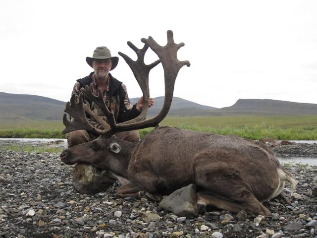 Brent Lavergne Caribou
