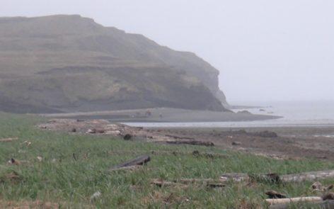 Alaska Peninsula Bear Hunt with Deltana Outfitters