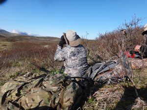 Hunting Alaska Bear with Deltana Outfitters
