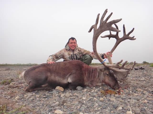Daniel Lee - 2014 Alaska Caribou
