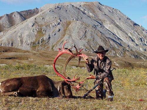 Dennis Pettitt Alaska Brooks Range Barren Ground Caribou