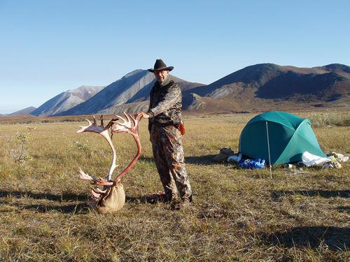 Dennis Pettitt Alaska Brooks Range Caribou