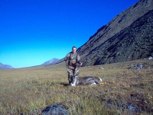 Ed Mann Brooks Range Caribou