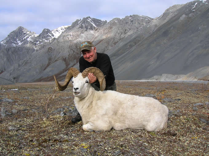 Fred Pilon Brooks Range Dall Sheep