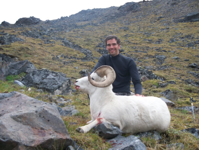 Garett_Wyness_Sheep