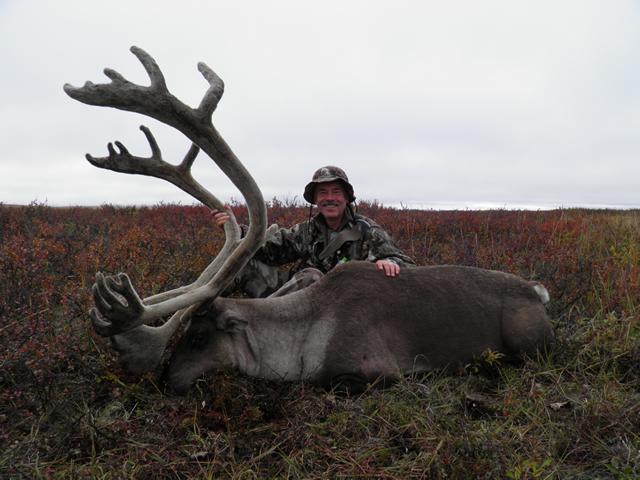 George Madok caribou