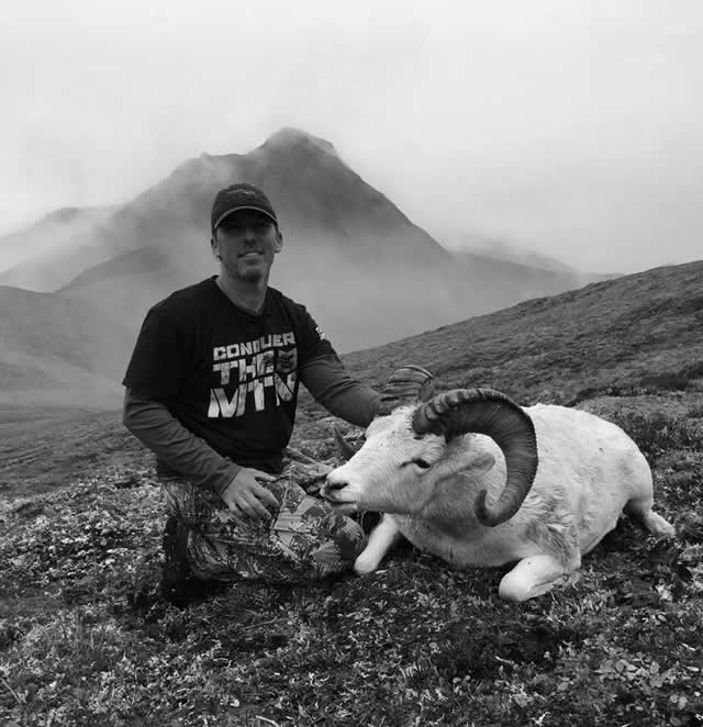 Jason Price Dall Sheep