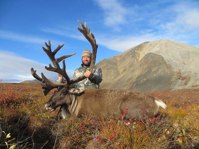 Jeff Porter Alaska Caribou 2