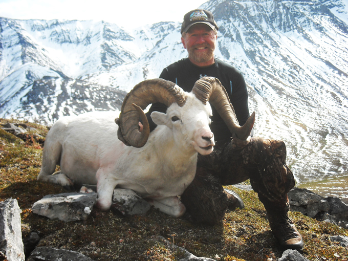 Jerry Russell Brooks Range Dall Sheep