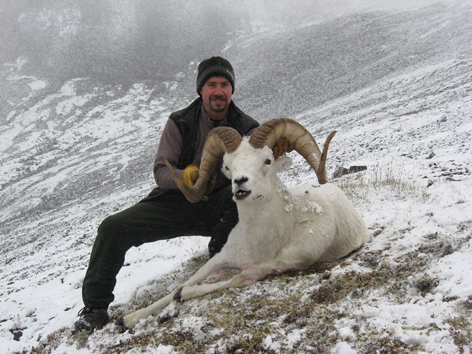 Keith Campbell Brooks Range Dall Sheep