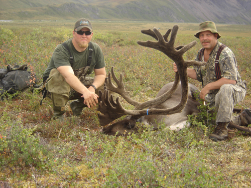 Larry Nichols Brooks Range Barren Ground Caribou