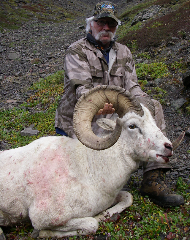 Lloyd Klassen_Brooks_Range_Dall_Sheep