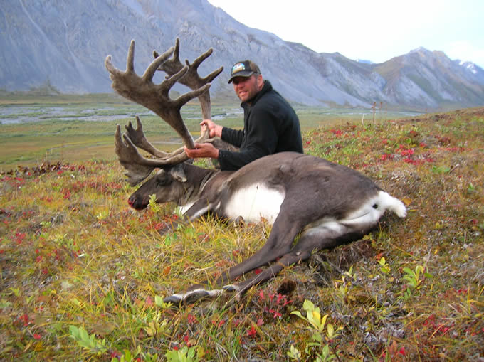 Olaf Christpherson with his Alaska Brooks Range Caribou