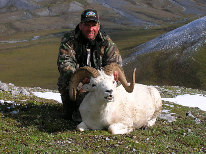 Olaf Christpherson Brooks Range Dall Sheep