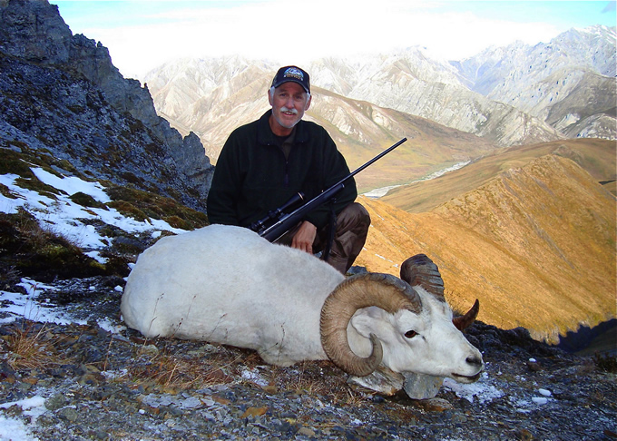 Peter Fullerton Brooks Range Dall Sheep