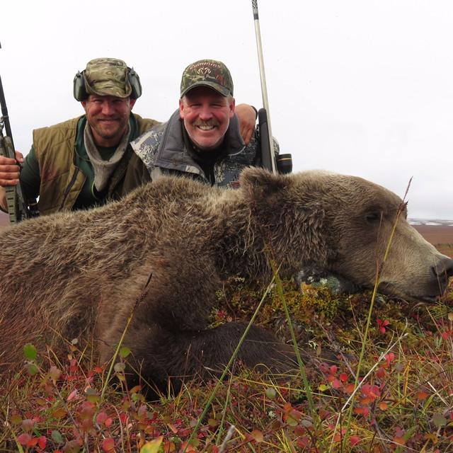 Randy Pretzer 2016 Grizzly Bear