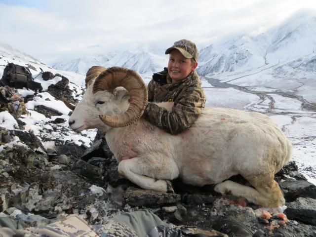 Riker_Graham_Sheep