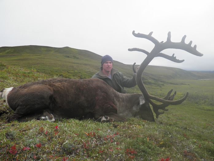 Steve Larson with first of two Trophy Brooks Range Caribou 2010