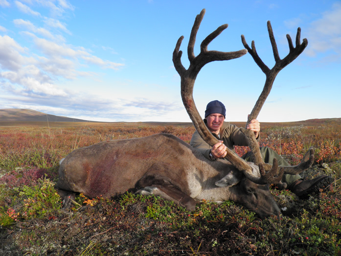 Steve Larson with his second Trophy Caribou 2010