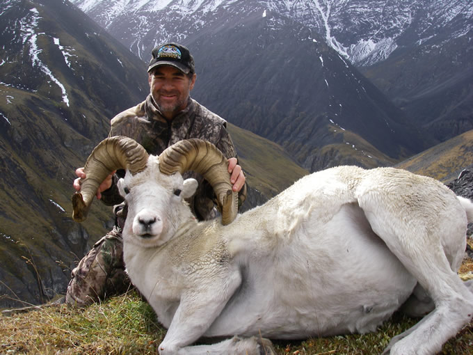 Tom Org  with his old broomed ram