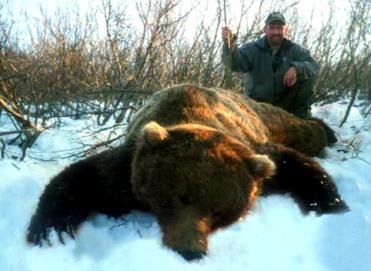 alaska bear hunt