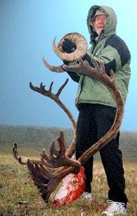 Caibou Hunt, Sheep Hunt, Alaska