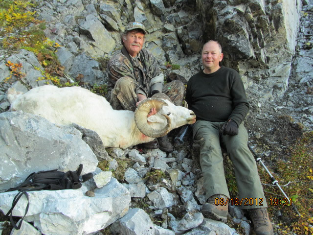 John Anderson Brooks Range Dall Sheep