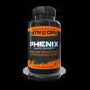 phenix-v2-400x400-130x130